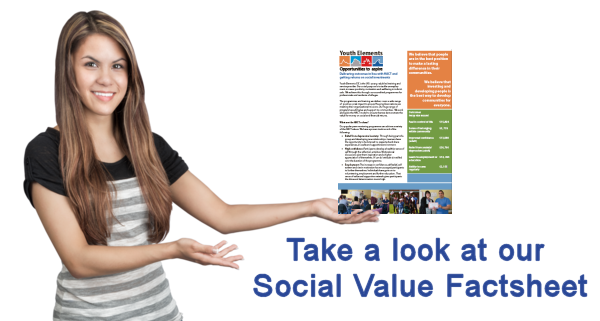 social values factsheet